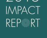 annual-report-2016-final-for-web-cover.png