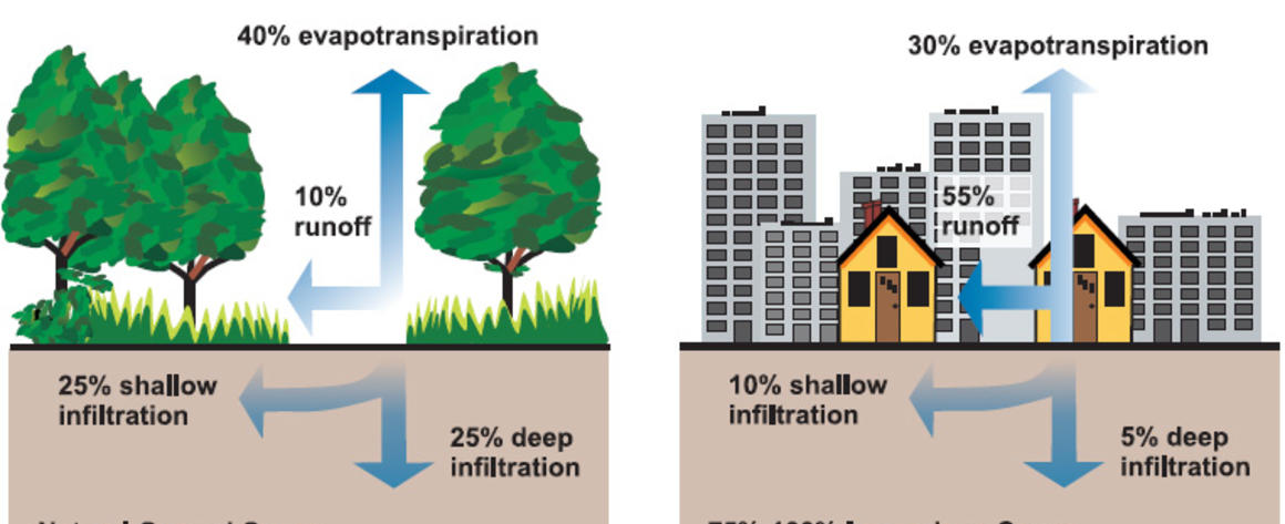 Green Infrastructure is pic.jpg